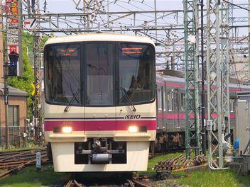 P5052508_r